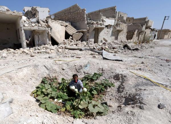 An Inventive Syrian Farms in a Bomb Crater